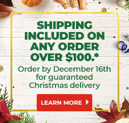 Shipping Included On Any Order Over $100